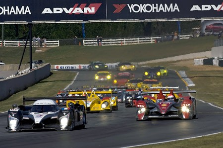 petitlemans2008_lead